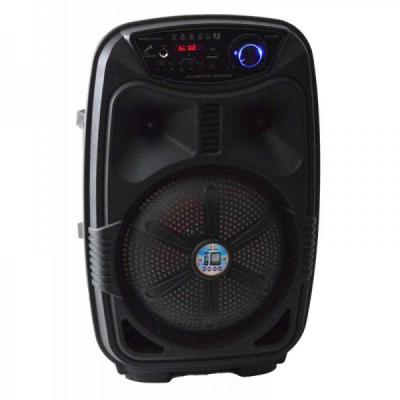 Boxa Karaoke Bluetooth Microfon Acumulator Telecomanda FM Radio CH818