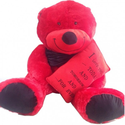 Cadou Indragostiti Ursulet de Plus Rosu 80cm cu Mesaj