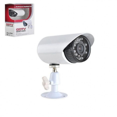 Camera Video CCTV cu Infrarosu 24 LED 24LM529AKT