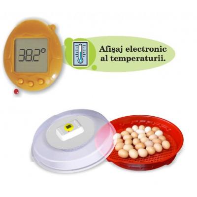 Incubator, Clocitoare oua IO102T