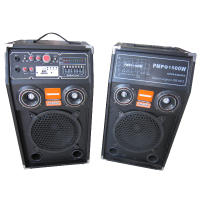 Set 2 Boxe Active Temeisheng 284T 10 Inch 200W MP3