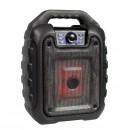 Boxa Portabila Iluminata cu Radio FM SD USB MP3 AUX B11