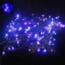 Instalatii Luminoase Craciun Snur 27m 320LED 7in1 Albastru-Mov FN EXT