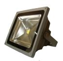 Proiector LED 30w lumina alba rece 220V
