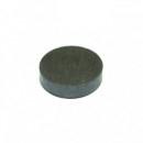 Set 10 Magneti rotunzi 2.5x0.3cm