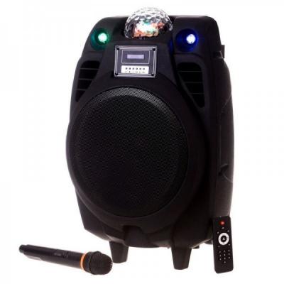 Boxa Portabila BT, FM, USB, SD, MIC, Telec, Glob Disco Temeisheng X10