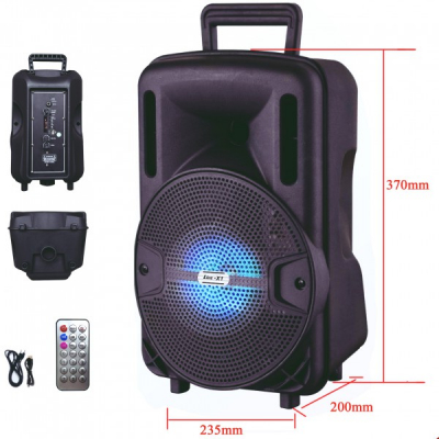 Boxa Portabila cu FM AUX SD USB MP3 si Telecomanda Ailiang LigeX1
