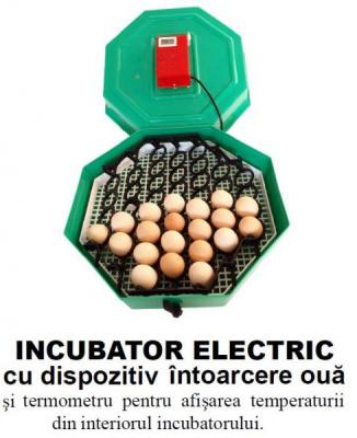 Incubator Electric Clocitoare 60 Oua Termometru si Intoarcere Cleo 5 MN9054