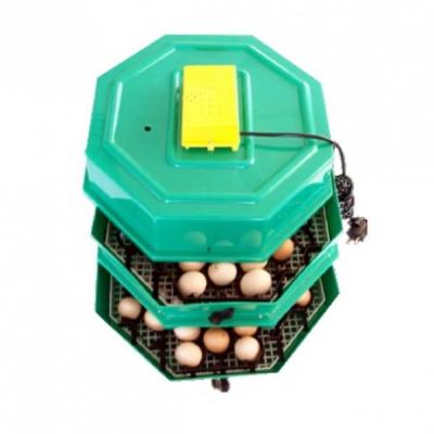 Incubator Electric Dublu Clocitoare Oua Cleo 5x2D cu Cheita Intoarcere