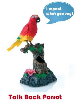 Papagal de jucarie din plastic  repeta ceea ce i se spune