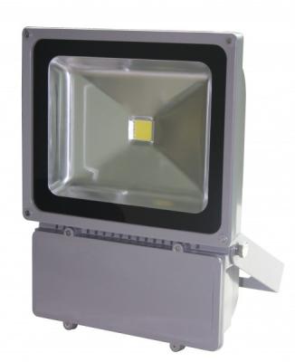 Proiector LED 100W Alb Rece 220V